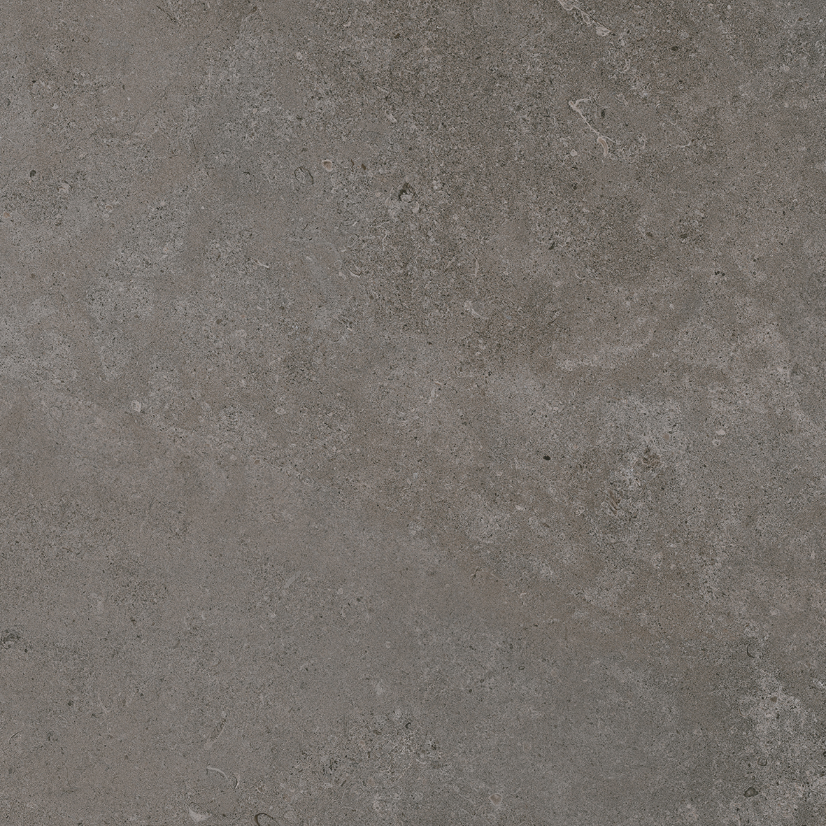 Porcelanosa Mosa-River Grey Tile 100 x 100 cm