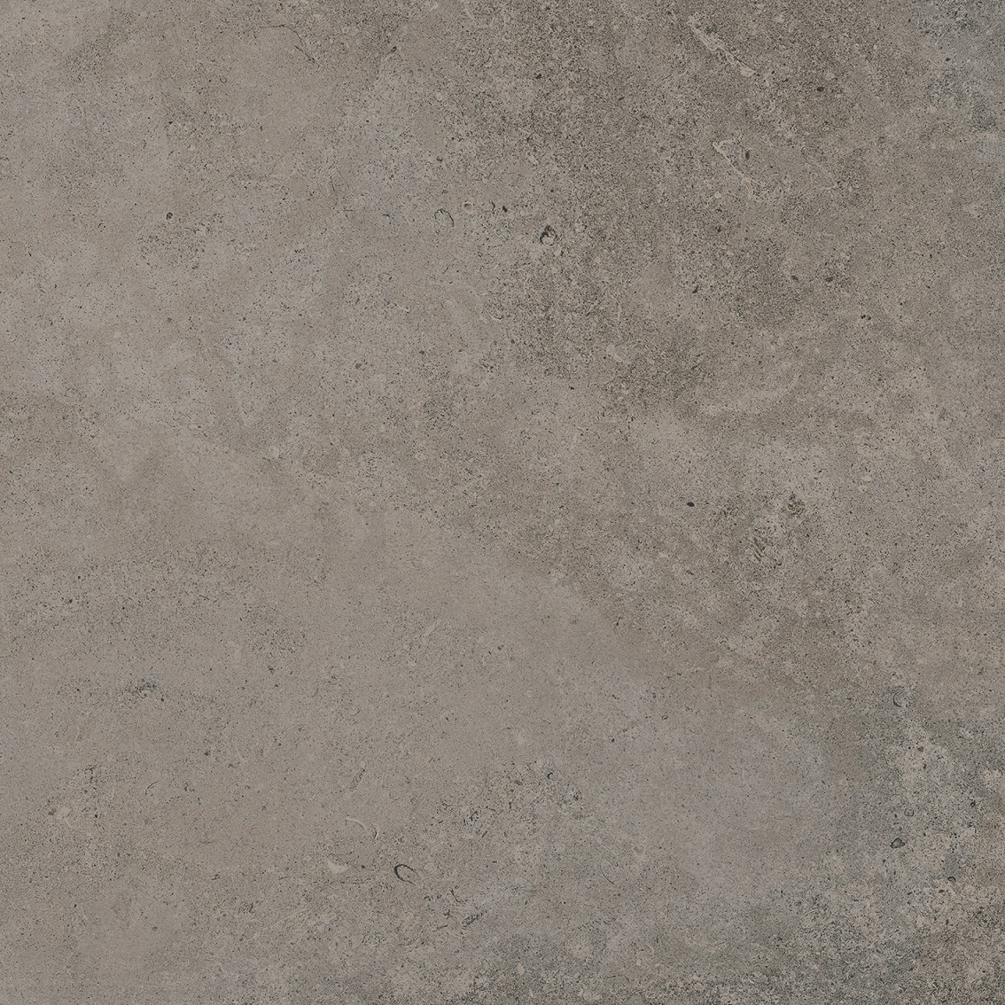 Porcelanosa Berna Topo 120 x 120 cm